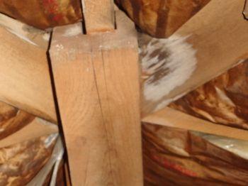 屋根裏の結露の事例